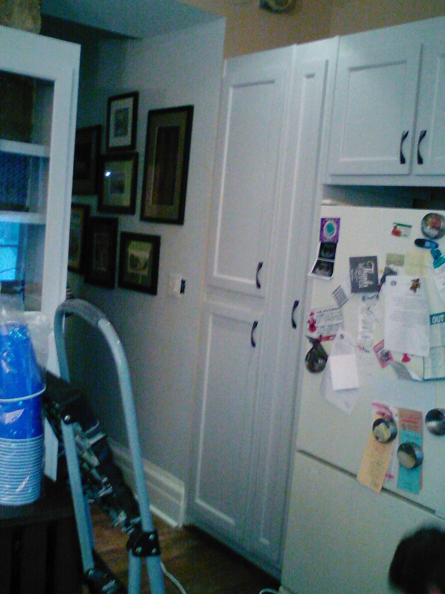 Pantry and wall cabinet's